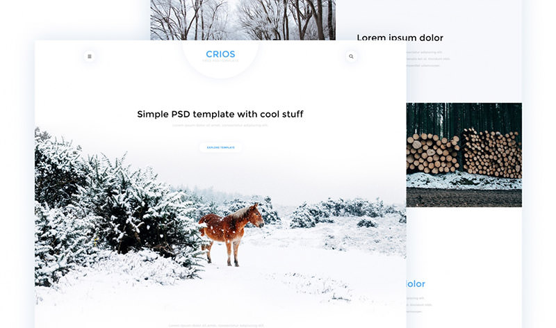 Crios: Clean Ultra-white Web PSD Template